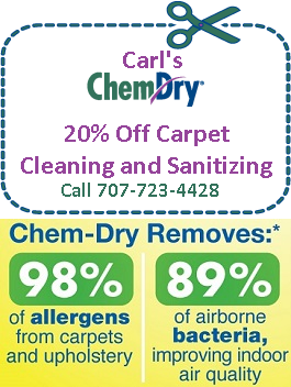 Carl's Chem-Dry coupon special